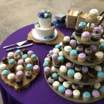 Rustic Purples and Blues Cake and Cupcake collection
